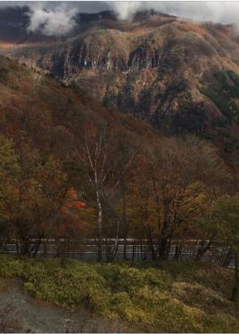 紅葉…日光いろは坂は?