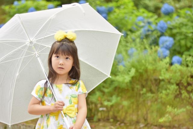 梅雨にこそ鮮やかに・・・